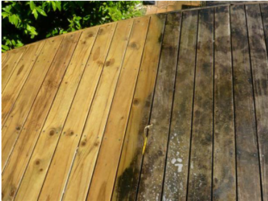 Deck Cleaning Mold And Mildew