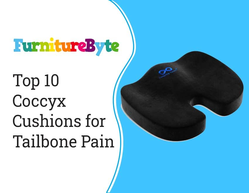 10 Best Coccyx Cushion | Reviews & Buying Guide 2021